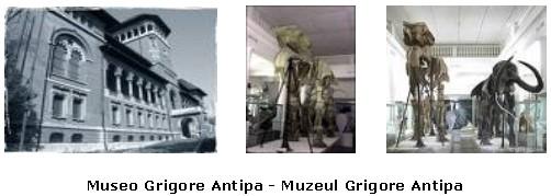 Bucarest: Museo Grigore Antipa